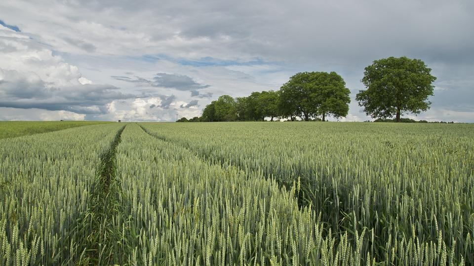 When will the land market start working?